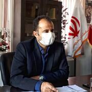افزایش ۵۷۰ درصدی قاچاق دام در کردستان
