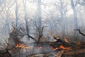 ۱۲ شهرستان گیلان درگیر آتشسوزی | ۳۵ هکتار جنگل سوخت