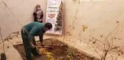 آغاز طرح «نهضت درختکاری» در منازل جنوبشرق تهران