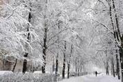 سه روز پر برف و باران و سرما در راه است | بارش برف و باران و وزش باد شدید در بیشتر مناطق ایران | تهران برفی میشود