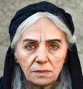 رونمایی از گریم متفاوت مریم بوبانی و خبری از فیلم شهاب حسینی