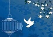 آزادی ۱۲ زندانی مالی اردبیل توسط هنرمند سرشناس