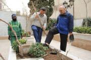 کاشت نهال در باغچه خانهتان فقط با یک تماس