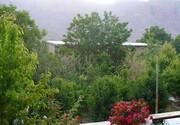 قلع و قمع ۵۵ هزار مترمربع کوهخواری در ییلاق دهبالا یزد