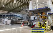 تولید فرش ۷۰۰ شانه