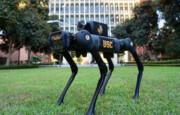 شکار کروناویروس با ربات چهارپا