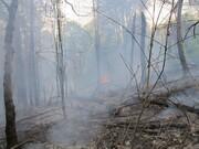 پارک ملی گلستان آتش گرفت