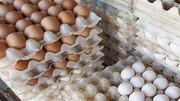 قیمت تخممرغ با شروع فصل گرما کاهش مییابد