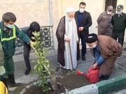 نهضت درختکاری در محلههای مرکزی تهران آغاز شد
