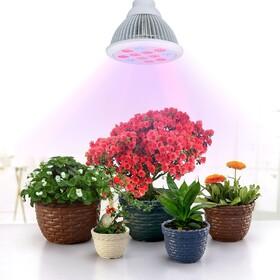 خرید لامپ رشد گیاه ارزان!