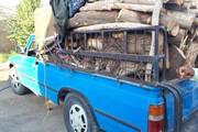 خودرو حامل درختان گز تالابی در ملکان توقیف شد
