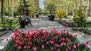 پایتخت با گلآرایی به استقبال نوروز رفت | کاشت لاله در ۵۰ بوستان تهران