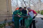 توزیع ۴ هزار اصله درخت میوه بین شهروندان منطقه ۱۷