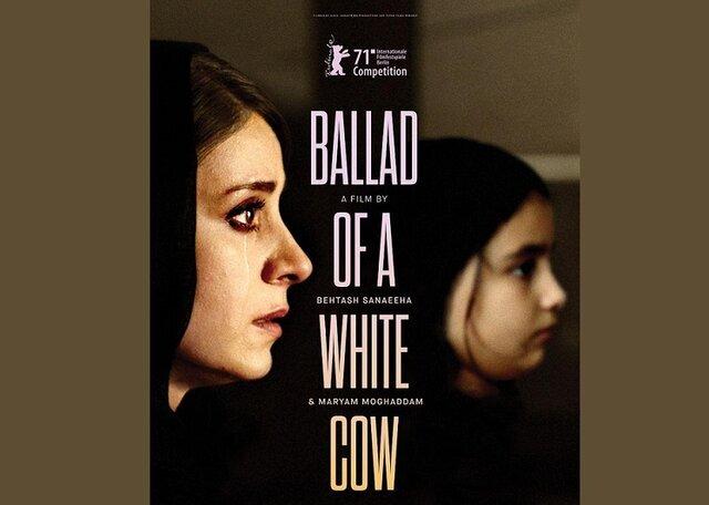 پوستر بینالمللی قصیده گاو سفید