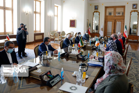 دیدار وزیران امور خارجه ایرلند و ایران