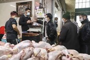 بازدید سرزده وزیر جهاد کشاورزی از میادین  عرضه مرغ در تهران | مرغ به اندازه کافی موجود است