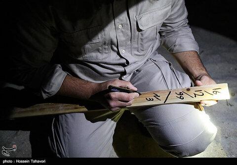 تخمگذاری لاکپشت پوزهعقابی در کیش
