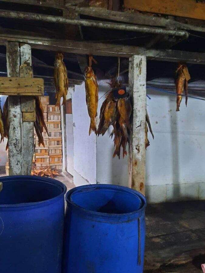 کارگاه ماهی دودی