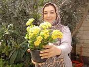 گل و گلدان؛ نسخه متفاوت خانم دکتر