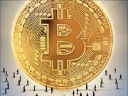 رمزارزها، مقصد جدید سرمایههای خرد | کوچ از بازار بورس به بازار بیتکوین