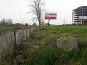 سرقت درختان حاشیه جادهها در مازندران