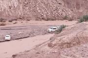 خسارت میلیاردی سیل و تگرگ به کشاورزی کرمان