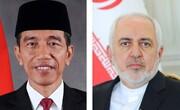 جزئیات دیدار ظریف با رییسجمهوری اندونزی
