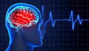 بیماریهای مغزی پیش از تولد جنین قابل پیشگیری هستند