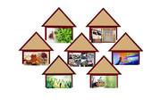 اجرای ۴۰۰طرح اشتغالزایی در ۳ دهستان صومعهسرا