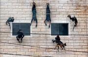 عکس روز | نمایش آمادگی نیروهای ویژه حماس در جشن دانشآموختگی پلیس غزه - فلسطین