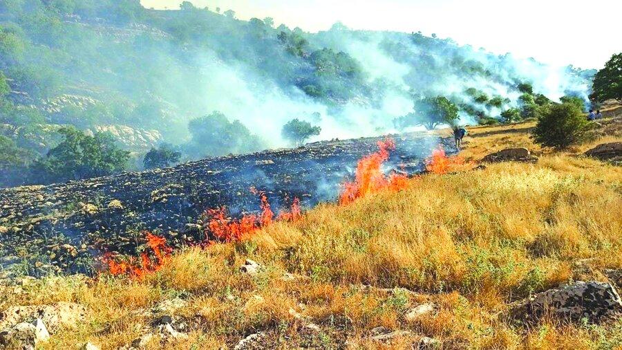 آتش سوزی زاگرس