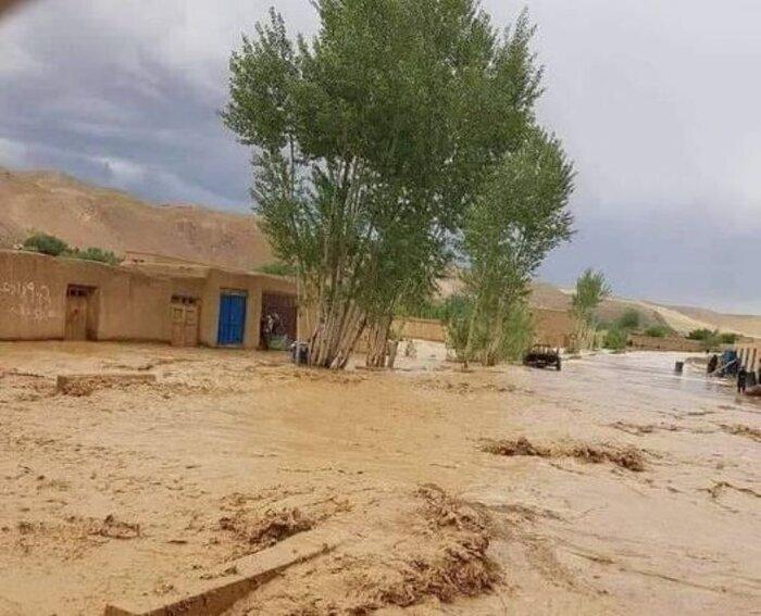 دلیل جانباختن ۶ کارمند شرکت برق کرمان در سیلاب