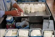 قیمت پنیر از ۱۰۰ هزار تومان گذشت