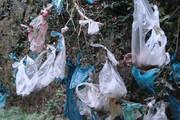 طبیعت خراسان جنوبی و معضل کیسههای پلاستیکی
