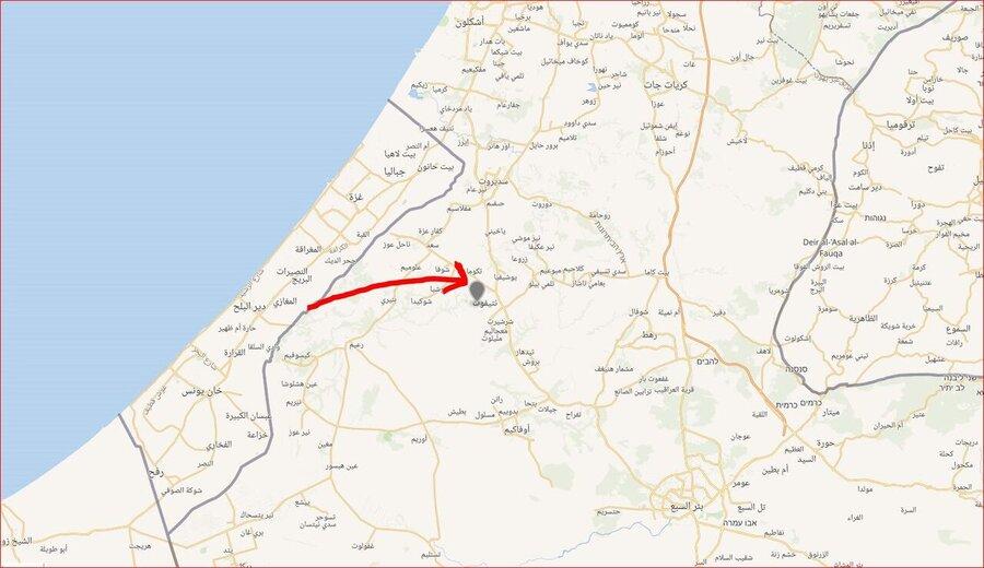 نتیفوت غزه