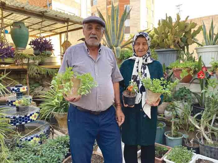 سفیر سبز محله شریعتی