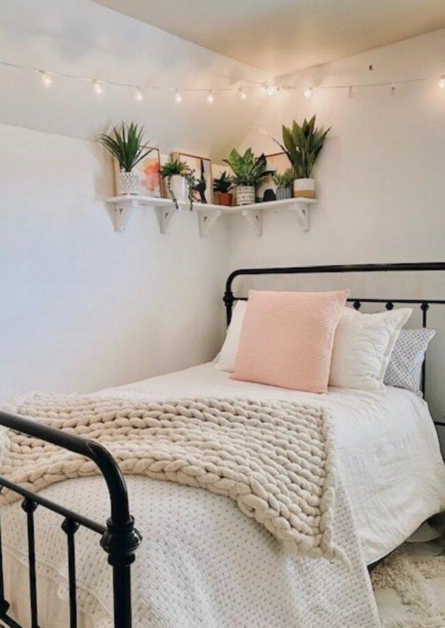 ۱۰ ایده خلاقانه برای چیدمان گیاهان آپارتمانی در خانههای کوچک