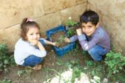 نخستین باغچه محلی توسط کودکان سبز شد