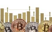 راهنمای سرمایهگذاری روی رمزارز | روایت پیچیده سکههای مجازی به زبان ساده