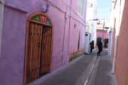 رنگ زنـدگی بر تن دیوارهای خسته