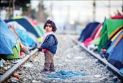 ۸۲ میلیون آواره در جهان | بیشترین تعداد آوارگان از کدام کشورها هستند؟