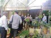 کارگاه گل و گیاه در بوستان تمدن