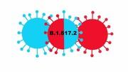 درباره گونه جدید «دلتا پلاس» کروناویروس چه میدانیم؟