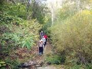 صعود به قلههای «بند عیش» و «پهنهسار» از جاده فرحزاد