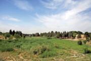 تفرجگاه جنگلی شمشاد در منطقه ۲۲ ساخته میشود