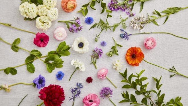 Flower - گل