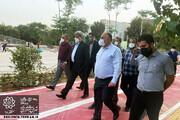 حناچی: باغ راه حضرت فاطمه (س) نیمه مرداد افتتاح میشود | این پروژه می تواند آسیبهای اجتماعی جنوب تهران را کاهش دهد