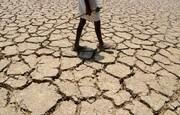 پنج میلیون مرگومیر در سراسر دنیا به علت دمای هوا