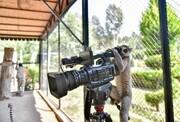 عکس روز| لمور پشت دوربین