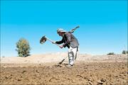 کشاورزان و دامداران هشدارهای هواشناسی را جدی بگیرند | خشکسالی ضعیف تا شدید در اکثر نقاط کشور